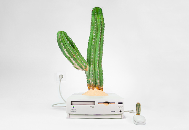 plant-your-mac