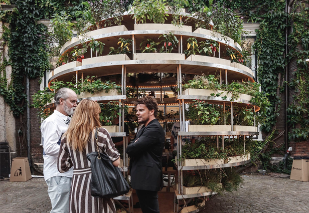 Proyectos Ecológicos Innovadores: The growroom